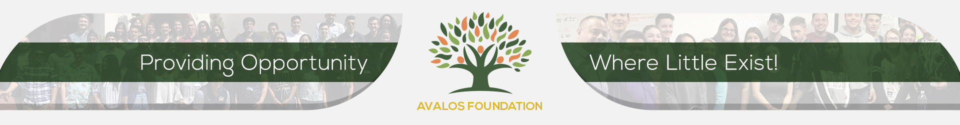 Avalos Foundation - top header